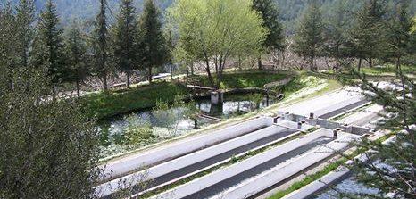 su_tahsisi_hidroloji_raporu